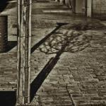 Rue d'ombres et lumières