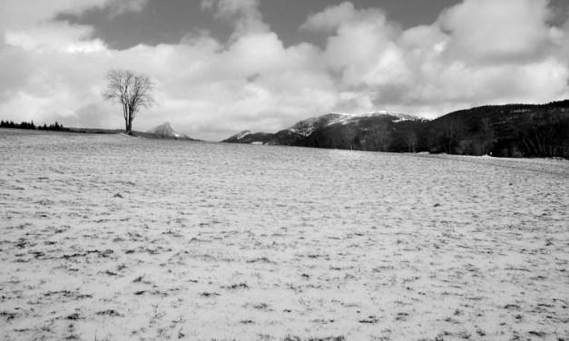 En attendant la neige…