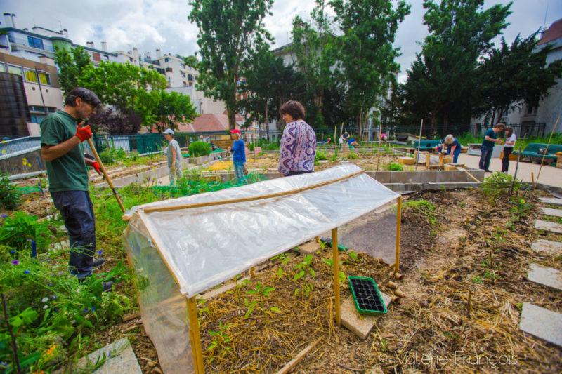 Bienfaits du jardinage : faites-vous du bien, jardinez !