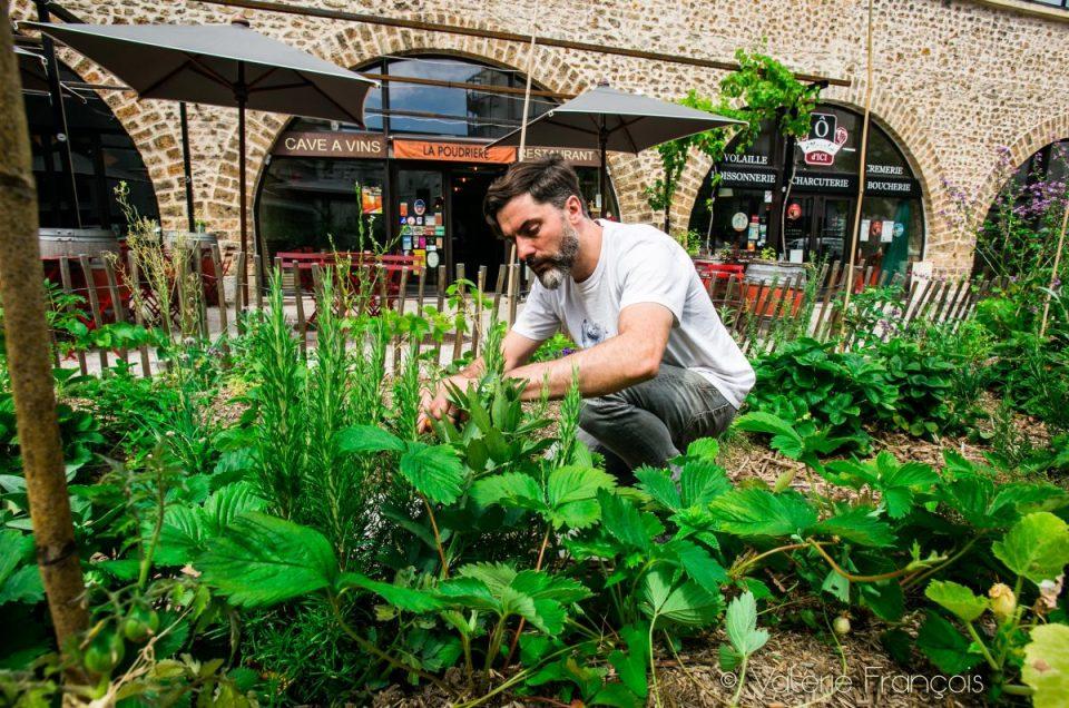 De la graine à l'assiette : le potager urbain du restaurant La Poudrière