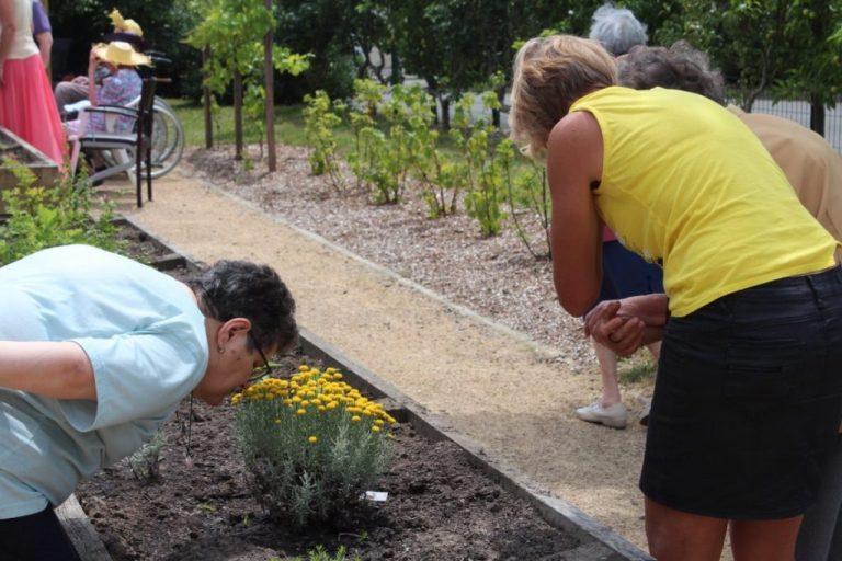Bienfaits du jardinage : Vivre dans un rayon de trois kilomètre autour d'un espace vert a un réel impact sur la santé.