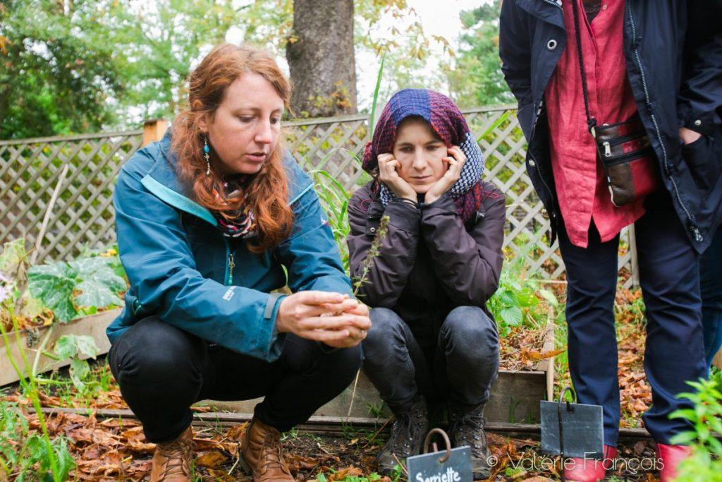 Lucile Chapsal, herboriste et créatrice des cueilleuses de paysage
