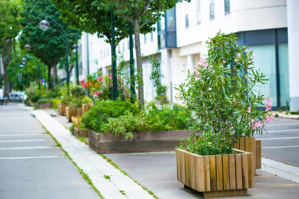 Les pieds végétalisés de la rue André Lefebvre Paris 15