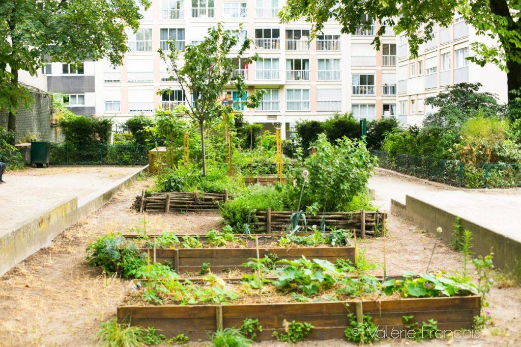 Square Colbert - le Jardin Marcotte, jardin solidaire animé par l'association Cultures en Herbes