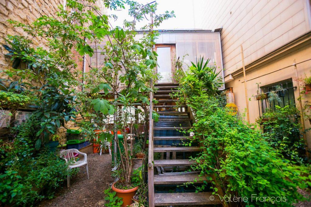 """Le jardin partagé le """"56"""" - Paris 20"""