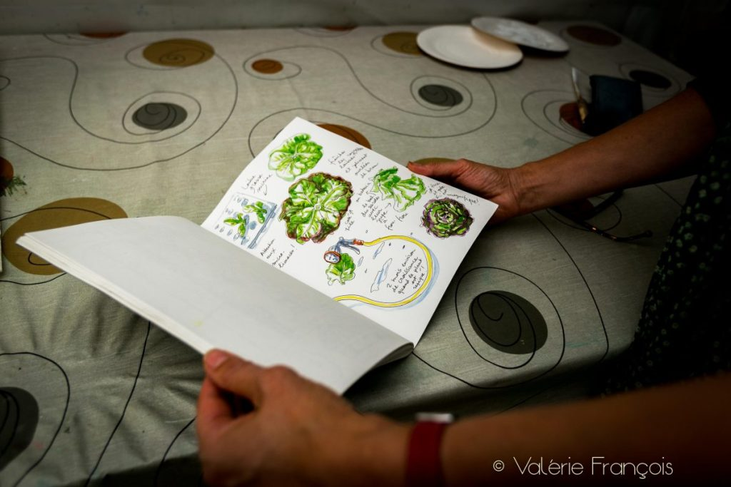Les carnets de bord de Raphaele Bernard-Bacot