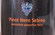 Pinot Nero 2003
