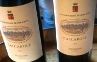 VINerdì Igp, il vino della settimana: Amarone della Valpolicella Classico Calcarole 1995, Guerrieri Rizzardi