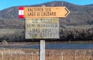 Alto Adige Lago di Caldaro Scelto Classico Bischofsleiten 2015 - Castel Sallegg