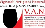 Il 18 e 19 novembre a Roma arrivano i V.A.N. e non è un gruppo Rock