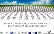 Giornata Nazionale della Cultura del Vino e dell'Olio, il 21 aprile con AIS Campania alla Reggia di Caserta