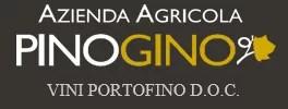 Logo azienda PinoGino
