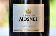 Produttori, un vino al giorno: Franciacorta EBB 2013 - Il Mosnel