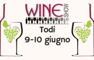 Wine Show 2018: dal Grechetto all'Amarone 120 cantine a Todi il 9 e 10 giugno