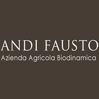 Logo Andi Fausto