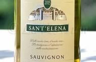 Friuli Isonzo Sauvignon Rive Alte 2015