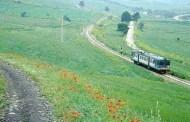 Irpinia Wine Valley, l'8 Marzo Donne del Vino in carrozza sul treno storico per Lapio