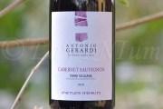 Produttori, un vino al giorno: Cabernet Sauvignon 2016 Antonio Gerardi