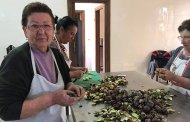 Agriturismo Parmenide, nel Cilento cultura della terra e Dieta Mediterranea