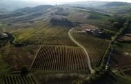 I Colli Bolognesi: la Tenuta La Riva
