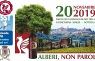 Milleduecento alberi, a Montepulciano parte l'iniziativa per l'ambiente