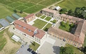 Il Consorzio Tutela Vini Oltrepò Pavese prende posizione sullo scandalo di Canneto Pavese