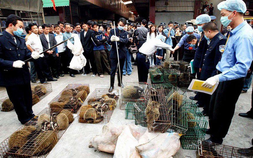 Marché des louvetaux à Wuhan