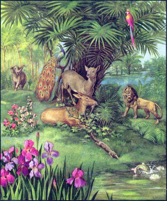God created the animals Genesis 1:21-22, 24-25