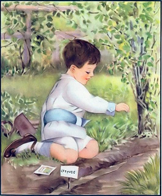 Boy planting lettuce seed in a garden Mark 4:26-29