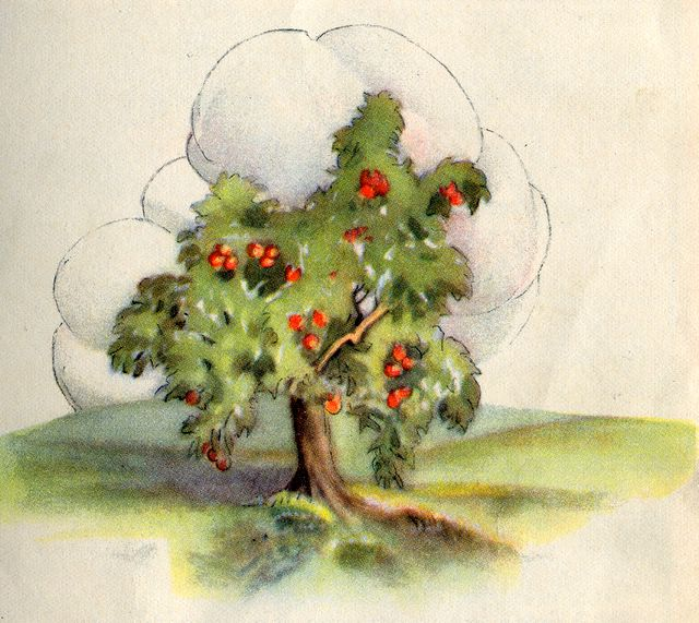 An Apple Tree Laden with Fruit Song of Solomon 2:3