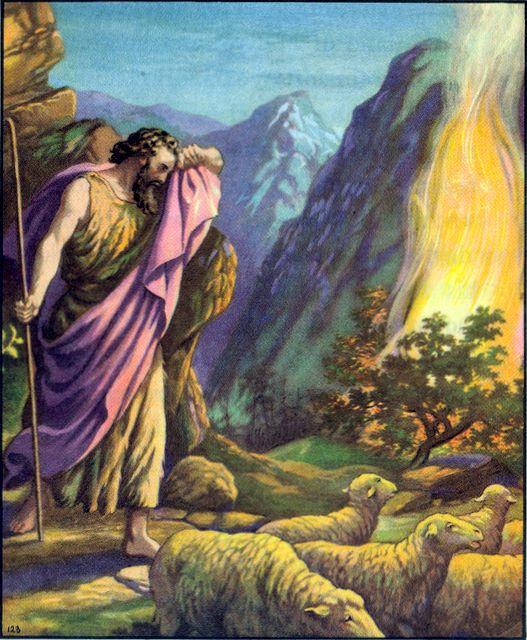 Moses sees a burning bush Exodus 3:1-5