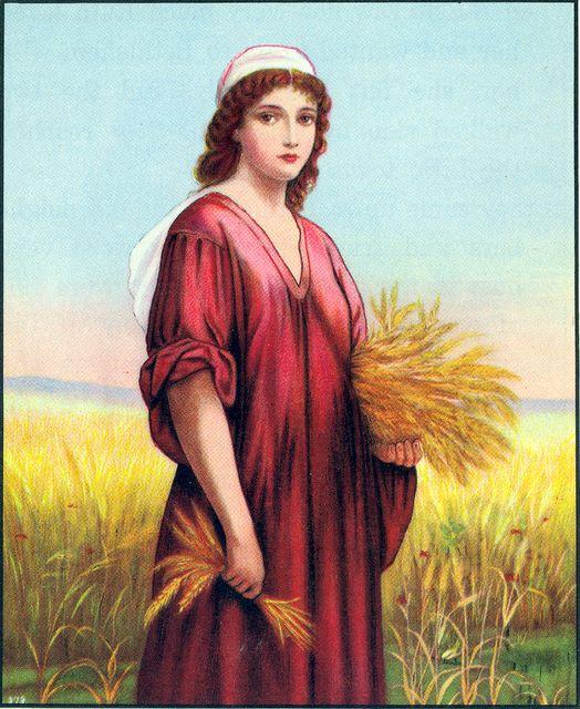 Ruth gathers grain Ruth 2:2-3