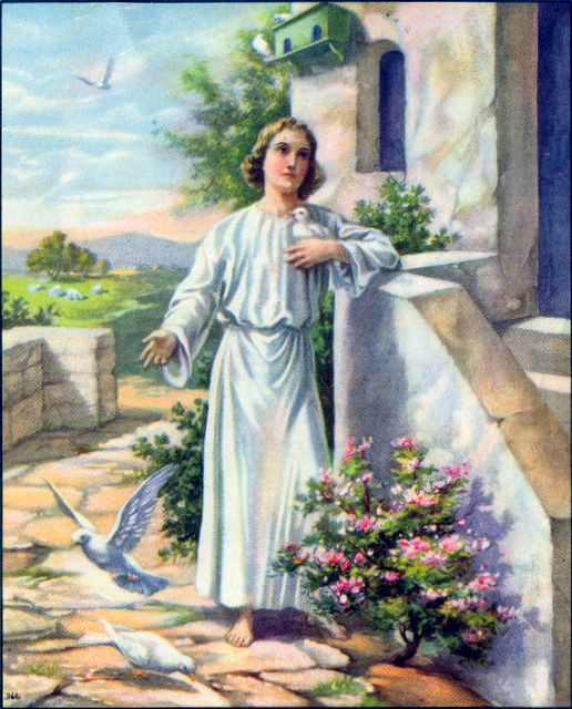 Jesus Grew Luke 2:52