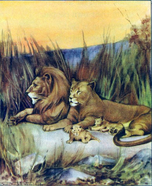 The Dwelling of Lions Nahum 2:11