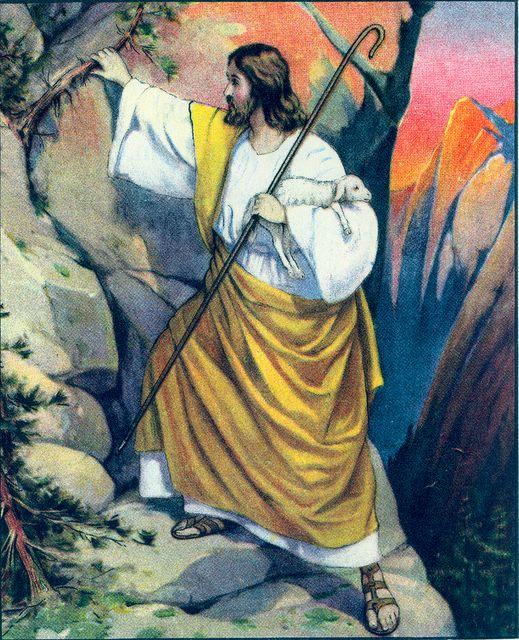 Jesus is the Shepherd Who Rescues the Lambs Matthew 18:14