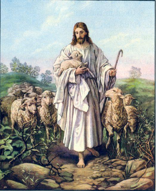 Jesus the Good Shepherd John 10:14