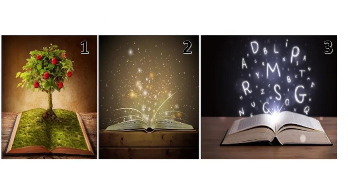 Scegli il Libro della saggezza: ti mostrerà il percorso per raggiungere i tuoi obiettivi