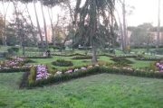 Incredibile: troppi alberi a Villa Doria