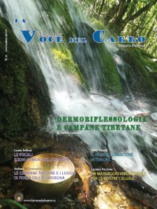 Magazine | lavocedelcarro.it