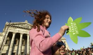 Uruguay, sì definitivo alla marijuana di Stato