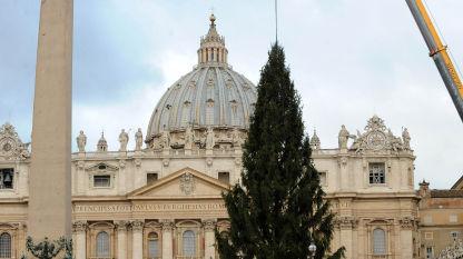 30 anni di alberi di Natale a Piazza San Pietro, tocca ai molisani