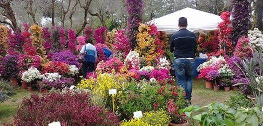 Giardini della Landriana: dal 2 aprile al via la stagione 2017
