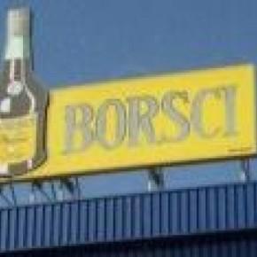 borsci