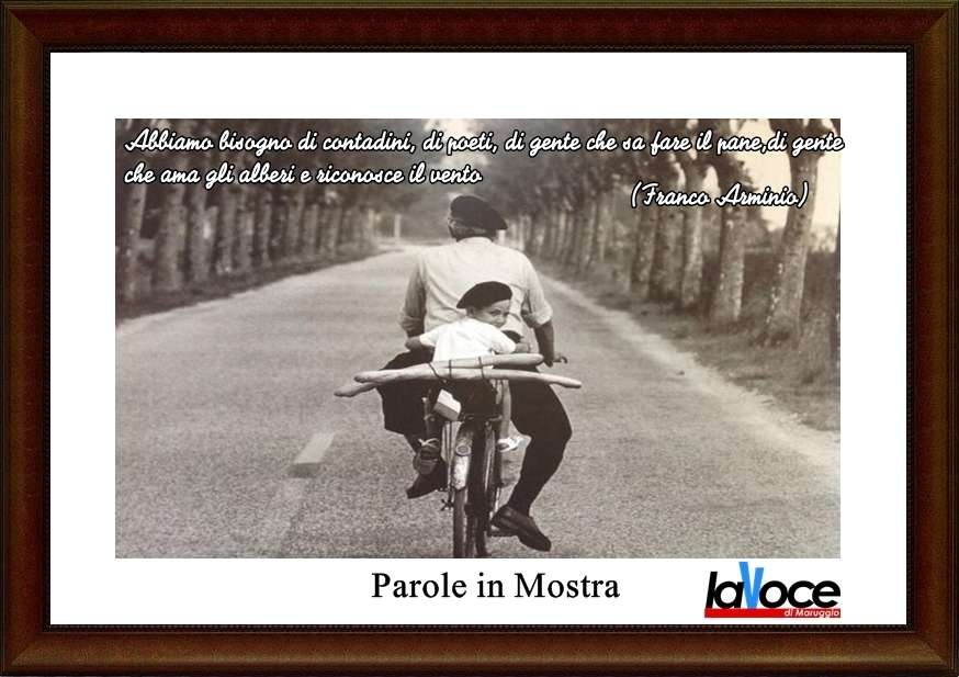 Parole in Mostra