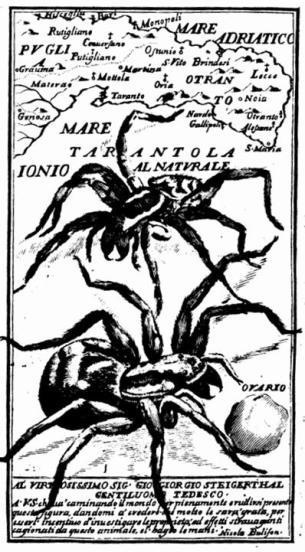 Illustrazione dal testo del Bulifon (pag. 152)