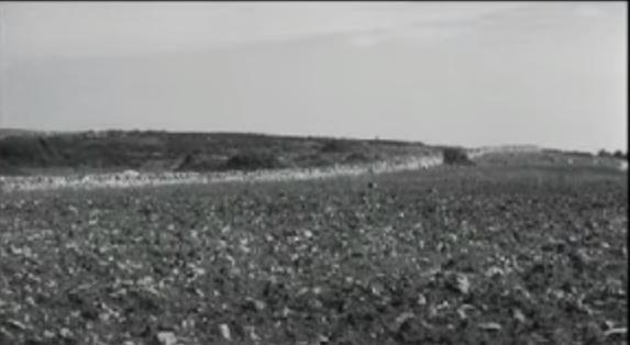 MONTE MACIULO IN AGRO DI MARUGGIO E LOCALITA' VICINIORI. TRACCIATI STORICO-ARCHEOLOGICI