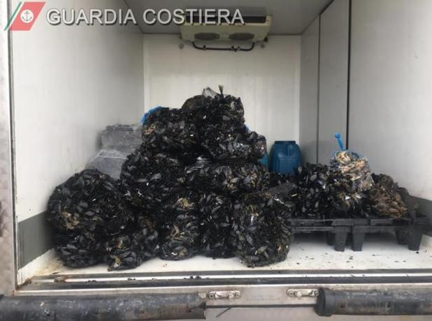 Guardia Costiera: sequestrati 8 quintali di cozze