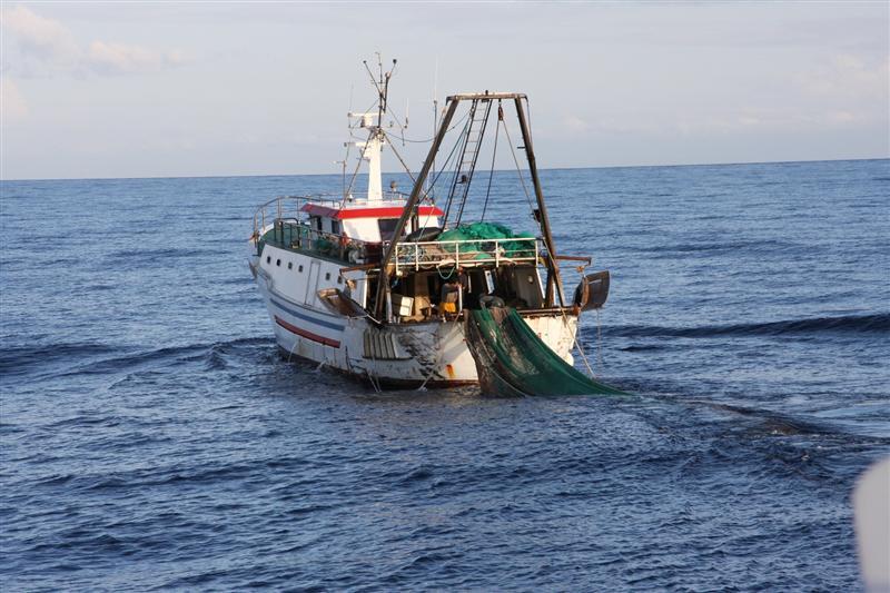 Oltre 11 milioni di euro dal FEAMP a favore del mondo della pesca del Veneto