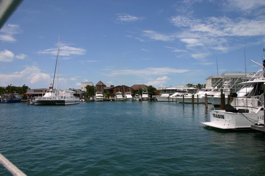 snorkeling Key West 02