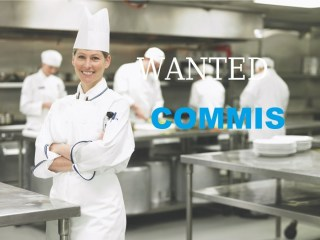 Image result for Commis